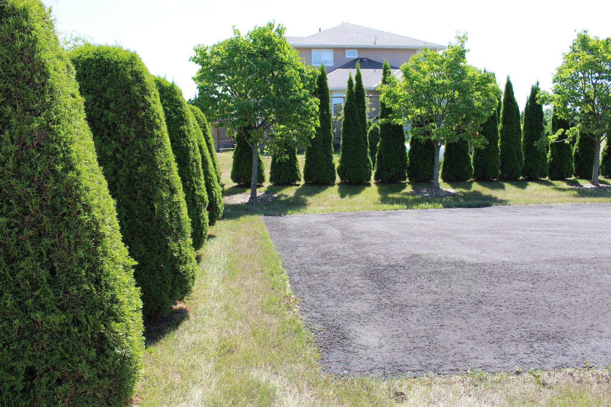 Photo 51: Photos: 159 Nawautin Drive in Grafton: Residential Detached for sale : MLS®# 40012652