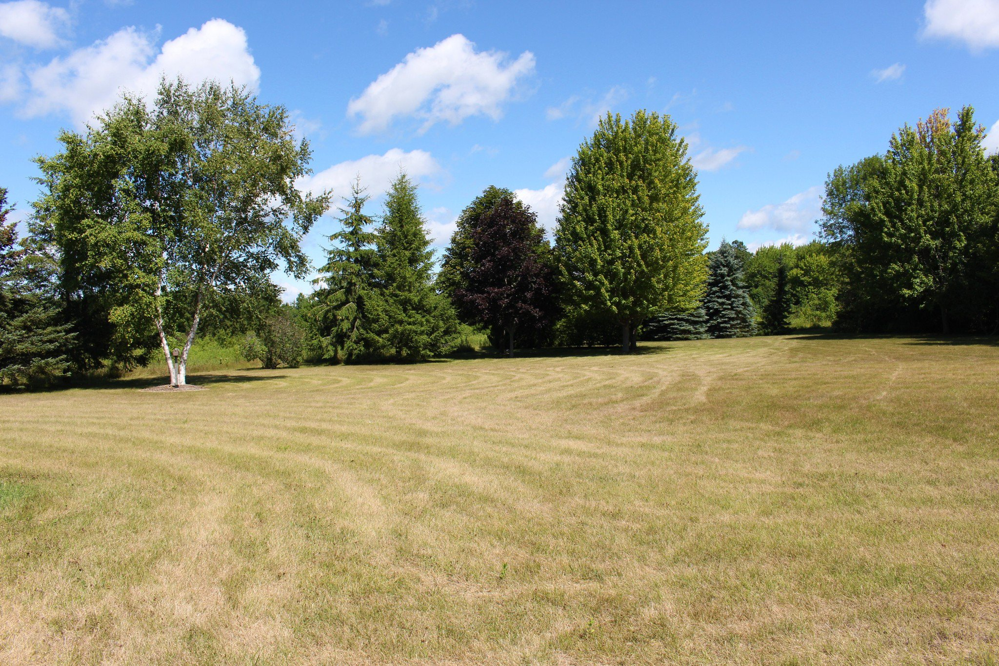 Photo 46: Photos: 159 Nawautin Drive in Grafton: Residential Detached for sale : MLS®# 40012652