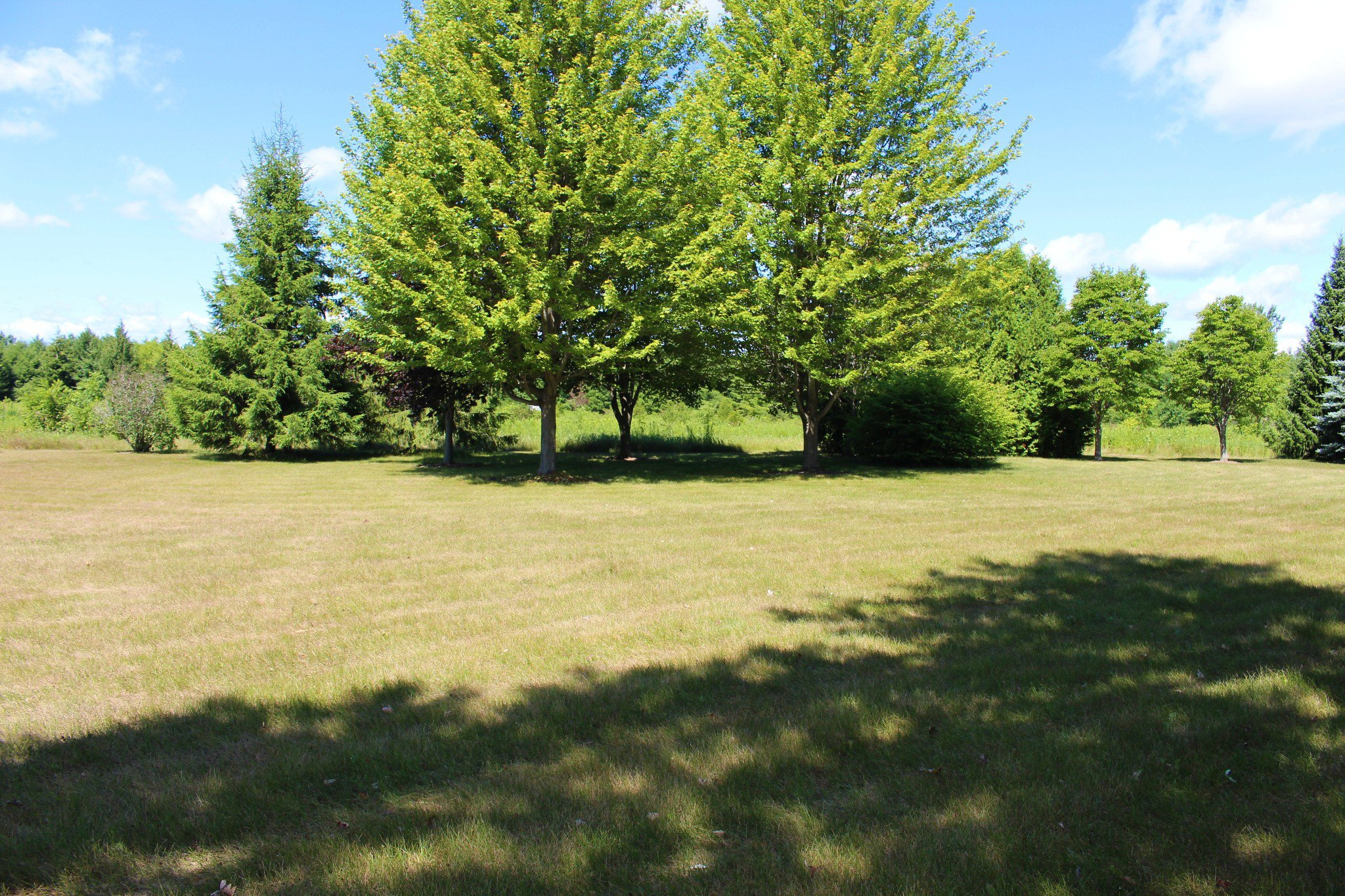 Photo 48: Photos: 159 Nawautin Drive in Grafton: Residential Detached for sale : MLS®# 40012652