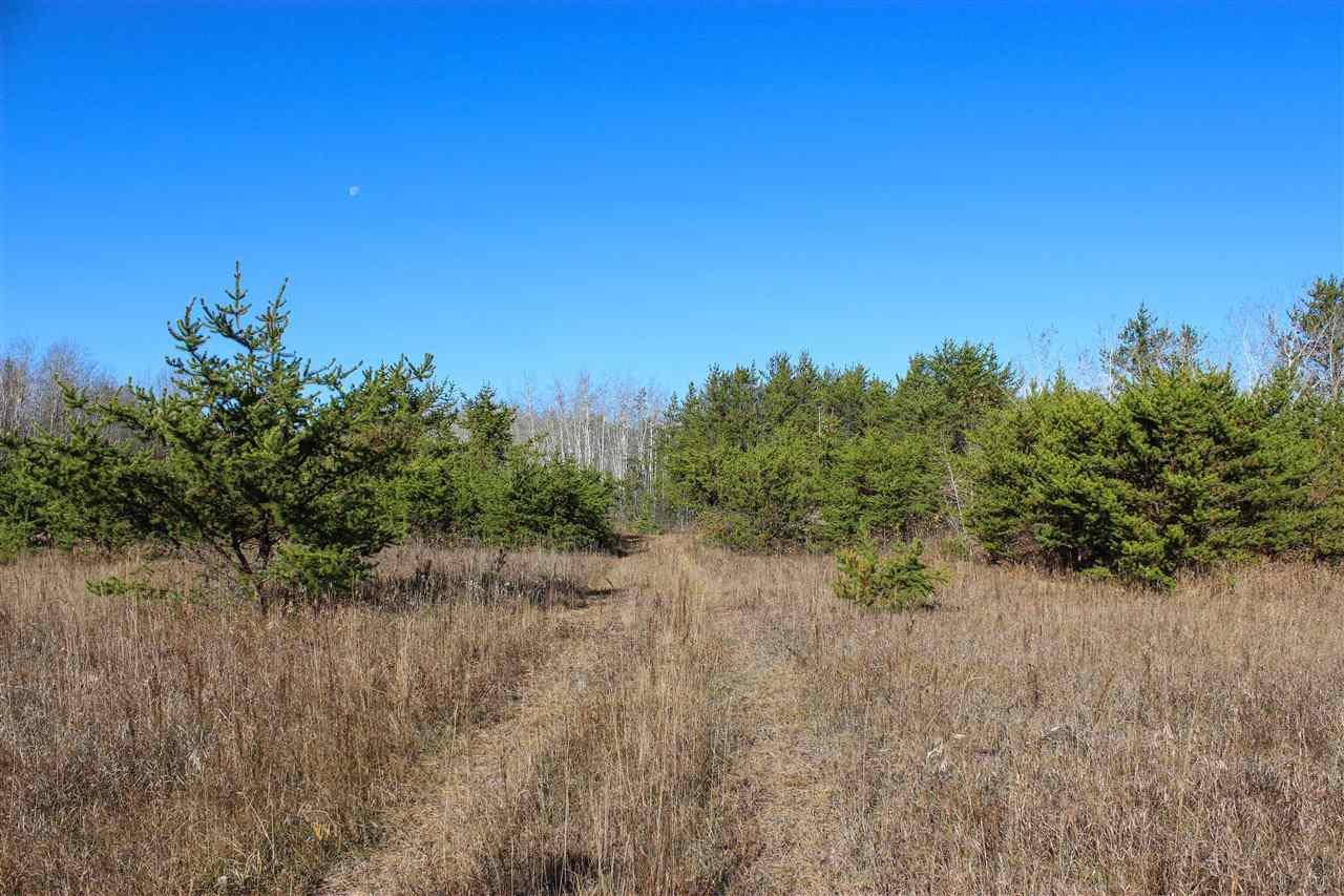 Main Photo: 6313 RR 432: Rural Bonnyville M.D. Rural Land/Vacant Lot for sale : MLS®# E4216988