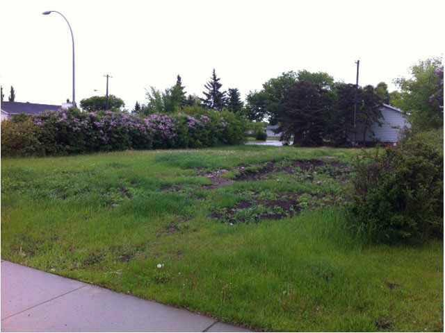 Main Photo: 13439 124 Street in Edmonton: Zone 01 Vacant Lot for sale : MLS®# E4184921