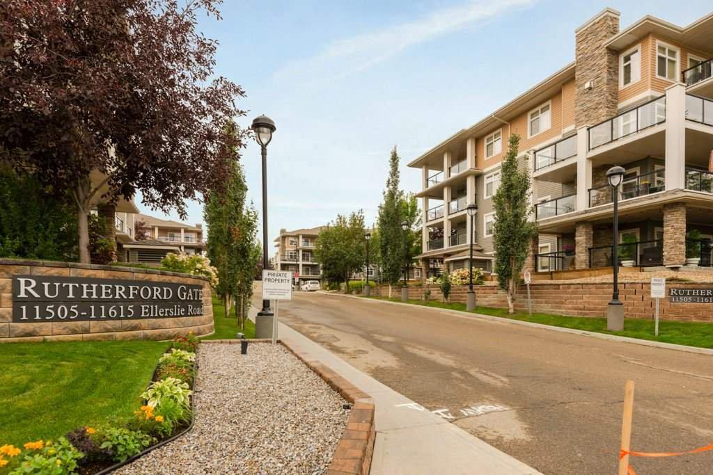 Main Photo: 248 11517 ELLERSLIE Road in Edmonton: Zone 55 Condo for sale : MLS®# E4173384