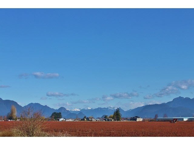 Main Photo: 17915 Ford Road Detour in Pitt Meadows: Agri-Business for sale : MLS®# R2519795