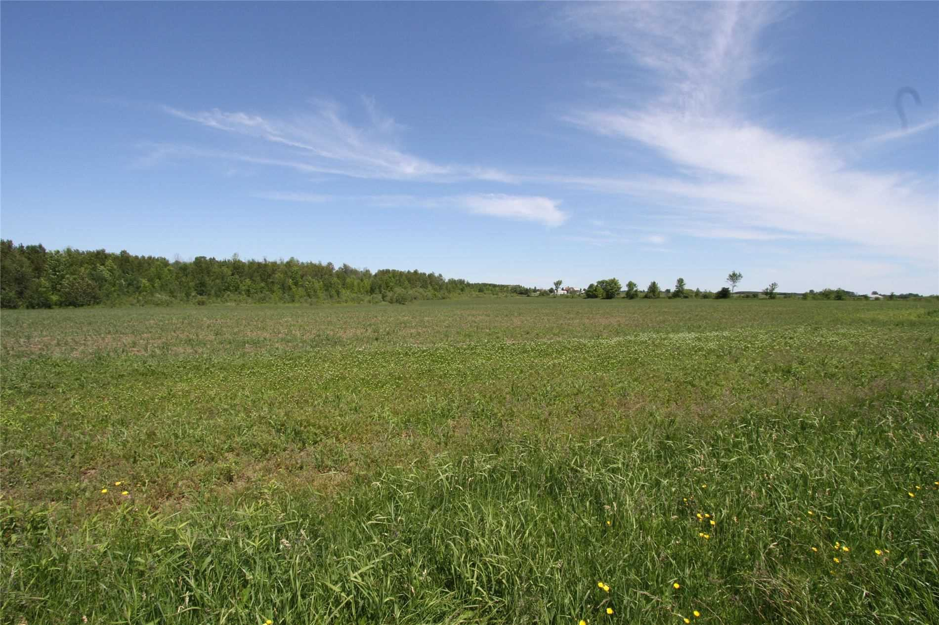 Main Photo: Lt 17 Centennial Park Road in Kawartha Lakes: Rural Eldon Property for sale : MLS®# X4795681