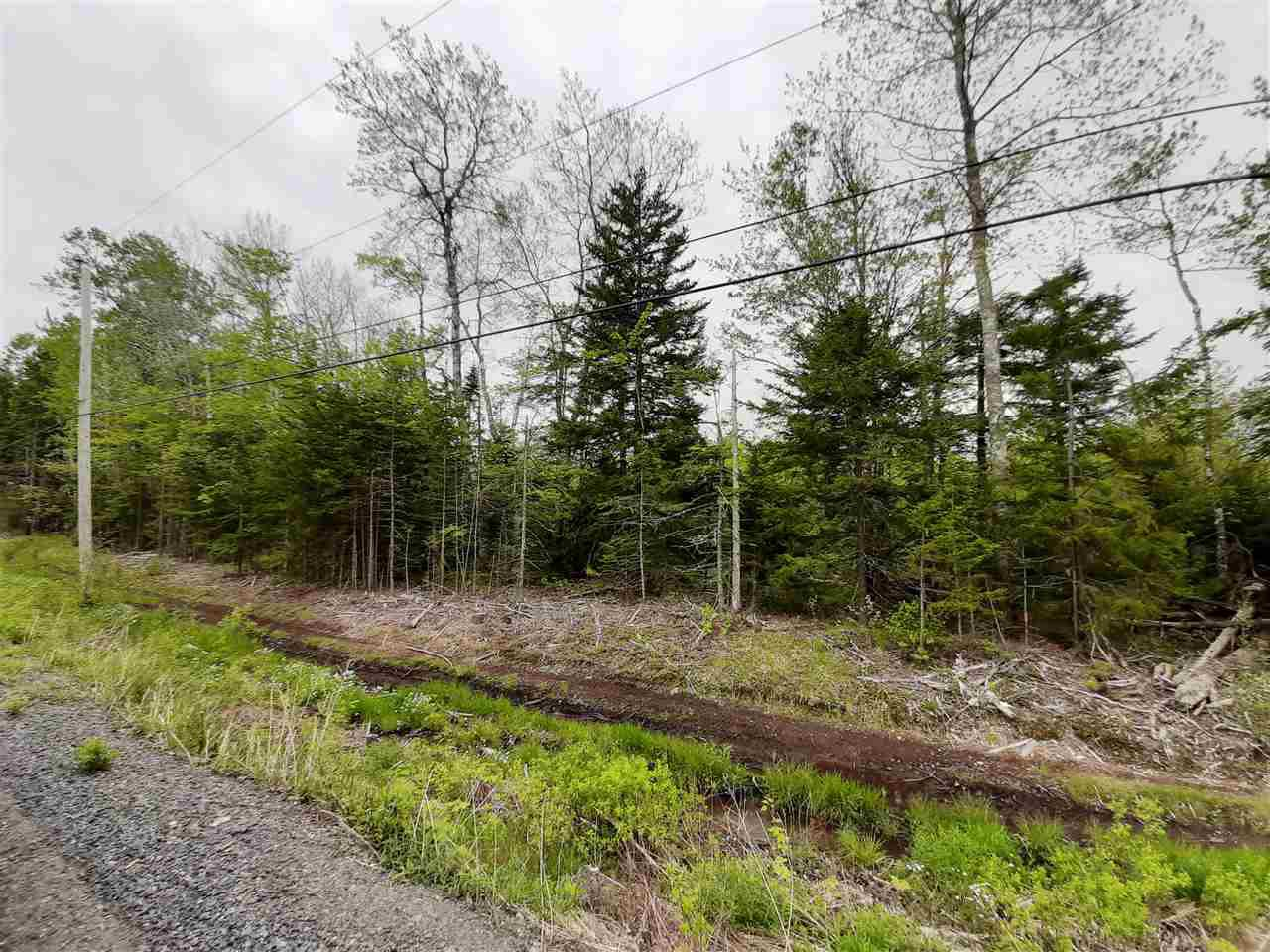 Main Photo: Lot A3 Aylesford Road in Lake Paul: 404-Kings County Vacant Land for sale (Annapolis Valley)  : MLS®# 202009530
