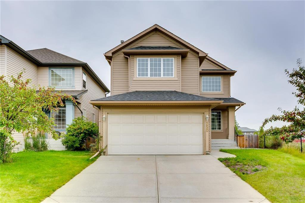 Main Photo: 250 MARTHA'S Manor NE in Calgary: Martindale Detached for sale : MLS®# C4267233