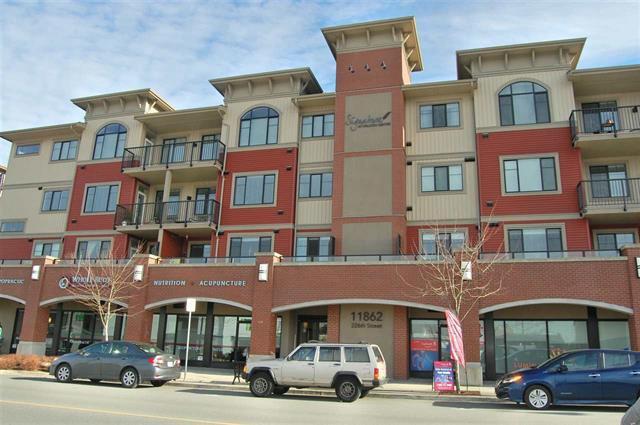 Main Photo: 201 11862 226 Street in Maple Ridge: Condo for sale : MLS®# R2336144