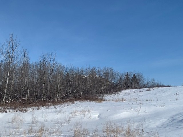 Main Photo: 120 49320 RGE RD 240 A: Rural Leduc County Rural Land/Vacant Lot for sale : MLS®# E4188045