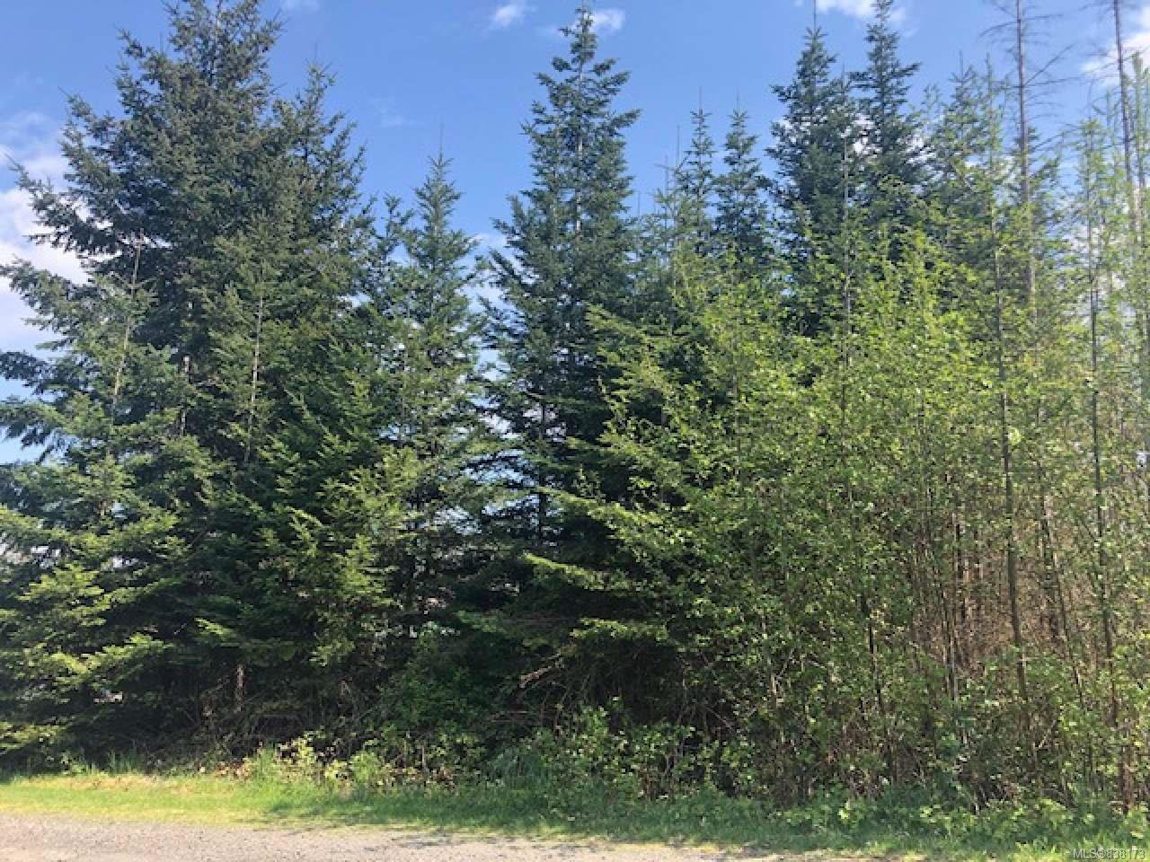 Main Photo: Lt 4 Ross Ave in ROYSTON: CV Courtenay South Land for sale (Comox Valley)  : MLS®# 838173