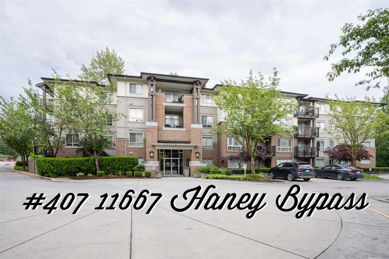 """Main Photo: 407 11667 HANEY Bypass in Maple Ridge: West Central Condo for sale in """"Haney's Landings"""" : MLS®# R2465780"""