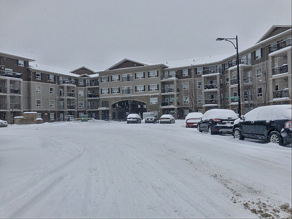 Main Photo: 440 1520 Hammond Gate in Edmonton: Zone 58 Condo for sale : MLS®# E4184931