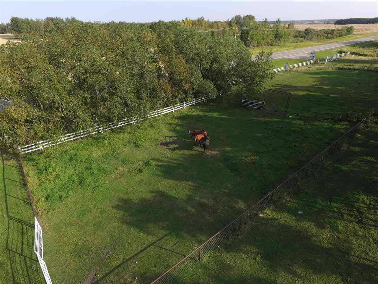 Photo 37: Photos: 472050A Hwy 814: Rural Wetaskiwin County House for sale : MLS®# E4213442