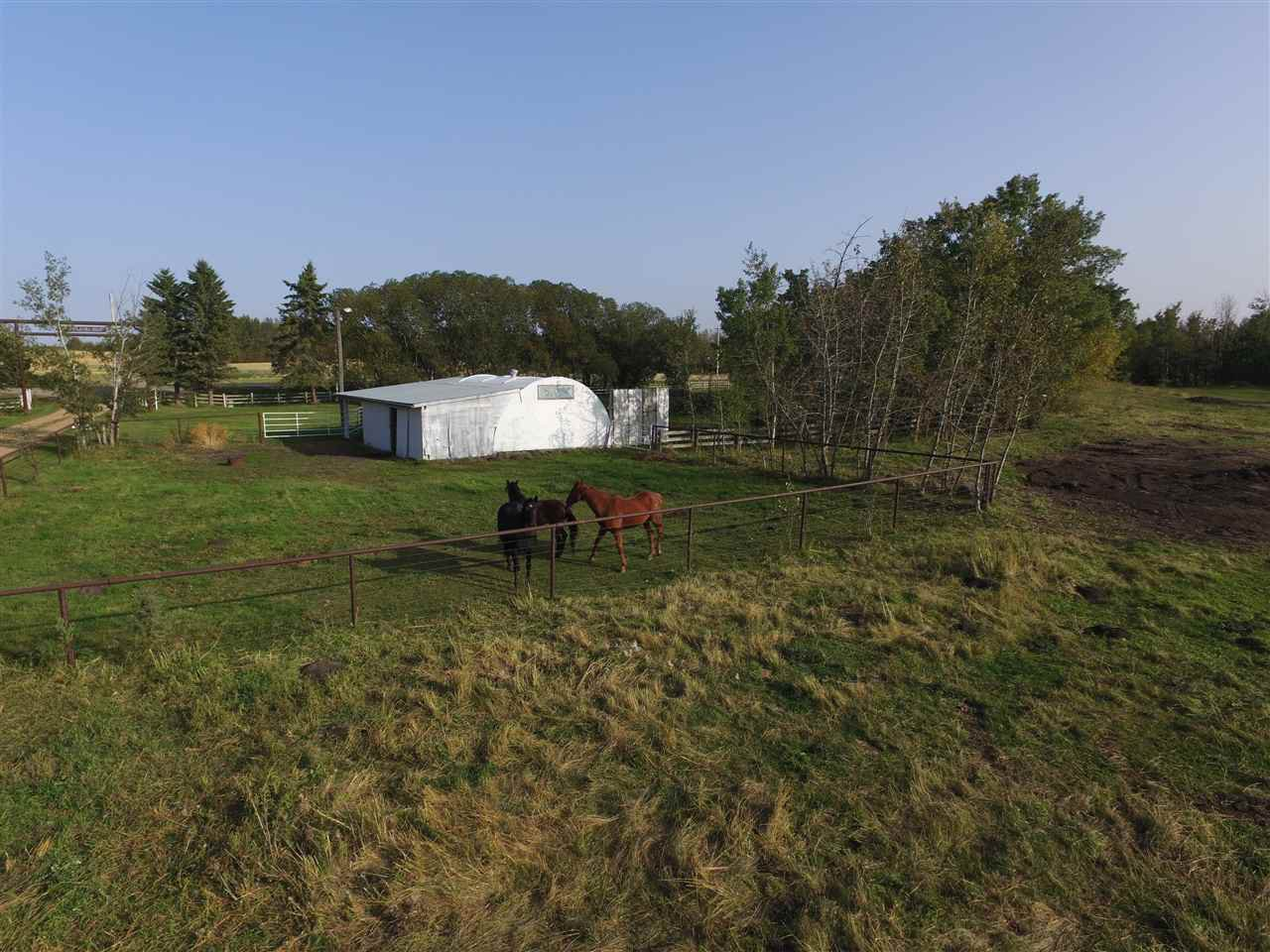 Photo 43: Photos: 472050A Hwy 814: Rural Wetaskiwin County House for sale : MLS®# E4213442