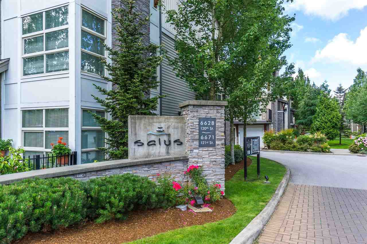 """Main Photo: 113 6671 121 Street in Surrey: West Newton Townhouse for sale in """"SALUS"""" : MLS®# R2424865"""