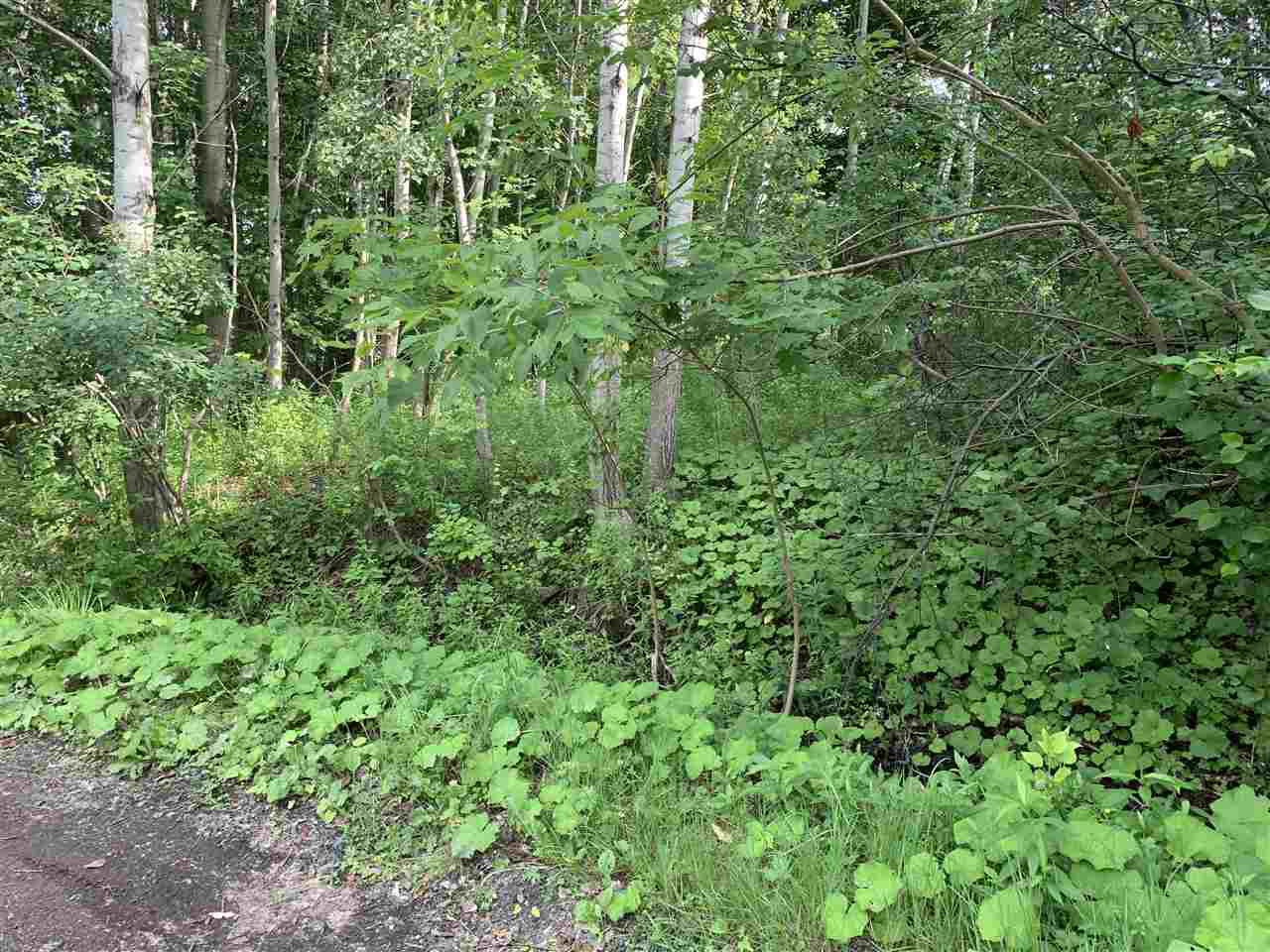 Main Photo: Brook Street in Trenton: 107-Trenton,Westville,Pictou Vacant Land for sale (Northern Region)  : MLS®# 202014523