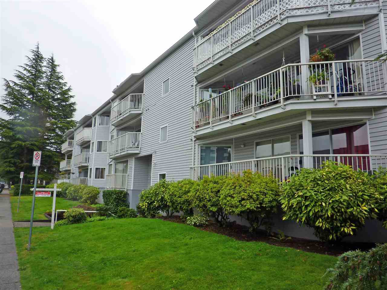Main Photo: 204 22222 119 Avenue in Maple Ridge: West Central Condo for sale : MLS®# R2459367