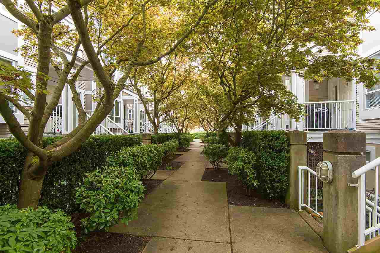 """Main Photo: 17 2885 E KENT Avenue in Vancouver: South Marine Townhouse for sale in """"River Walk"""" (Vancouver East)  : MLS®# R2435583"""