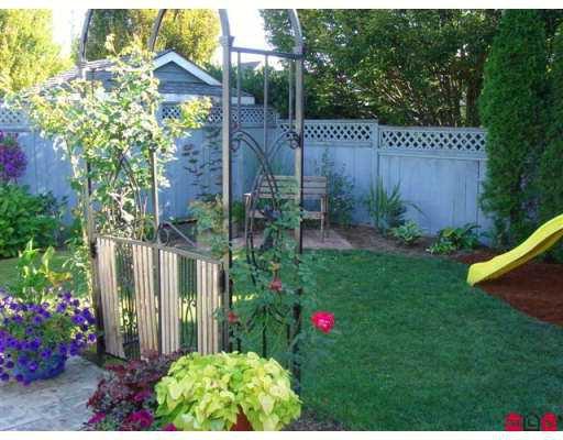 Photo 8: Photos: 21578 94A AV in Langley: Walnut Grove House for sale : MLS®# F2619301