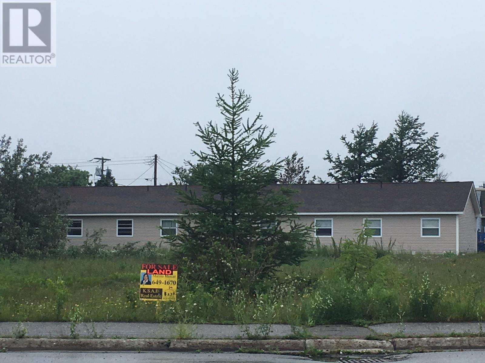 Main Photo: 93 West Street AND 17 Boland Avenue in Stephenville: Vacant Land for sale : MLS®# 1179881
