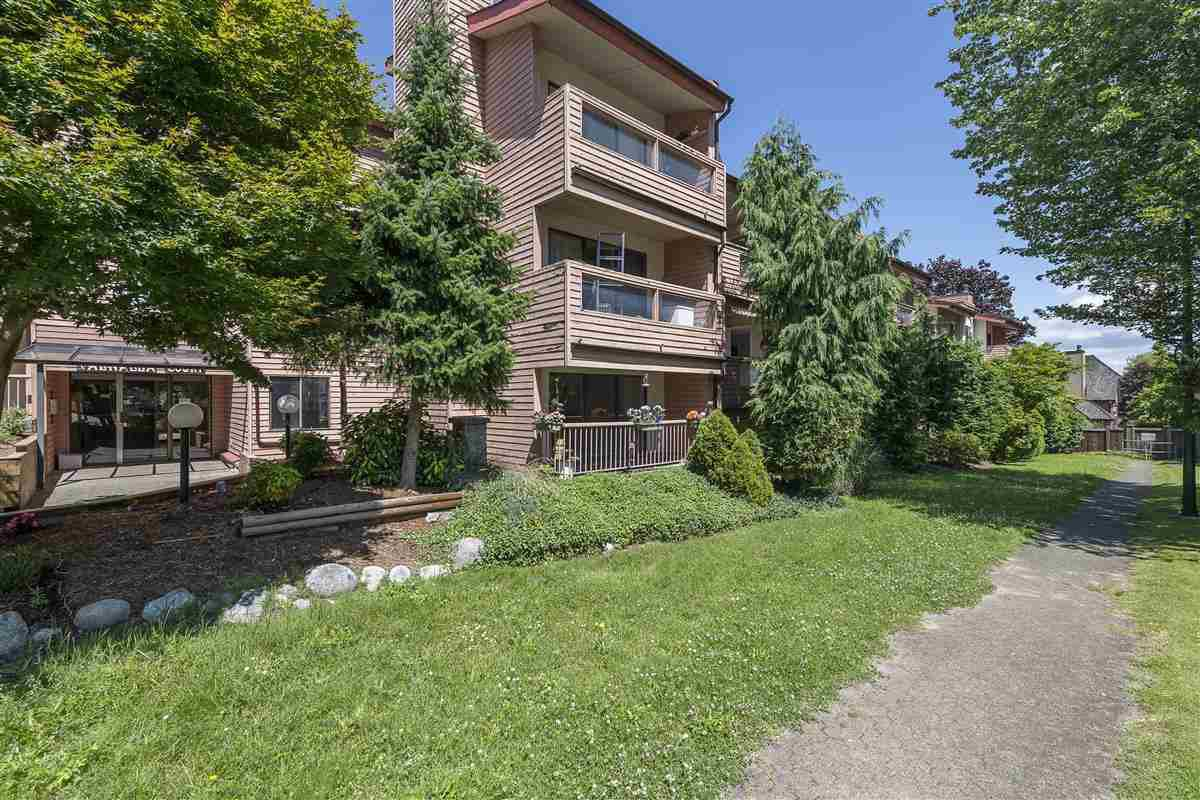 """Main Photo: 117 3883 LAUREL Street in Burnaby: Burnaby Hospital Condo for sale in """"VALHALLA COURT"""" (Burnaby South)  : MLS®# R2491547"""