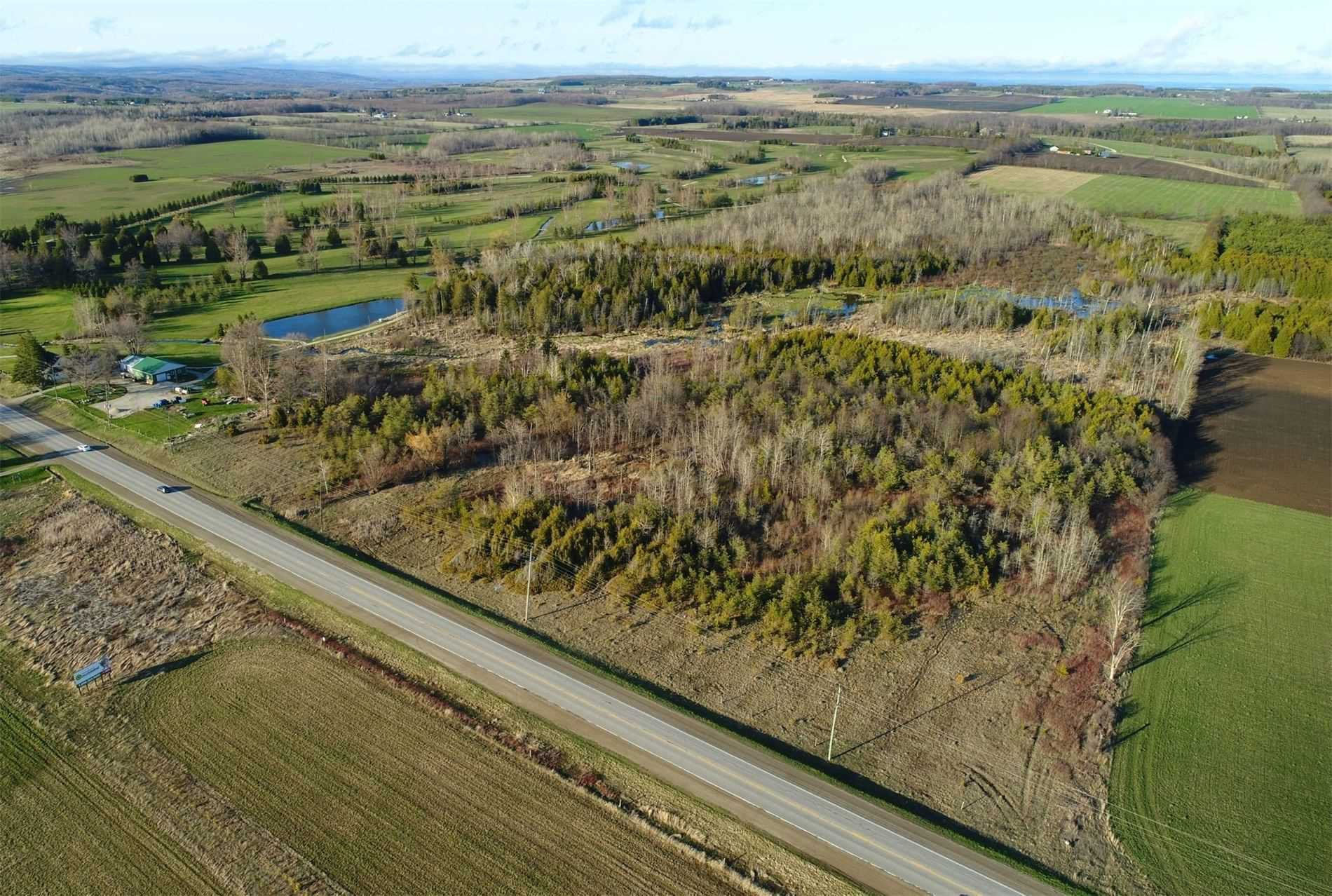 Main Photo: Pt Lt 7 Hwy 124 in Melancthon: Rural Melancthon Property for sale : MLS®# X4759358