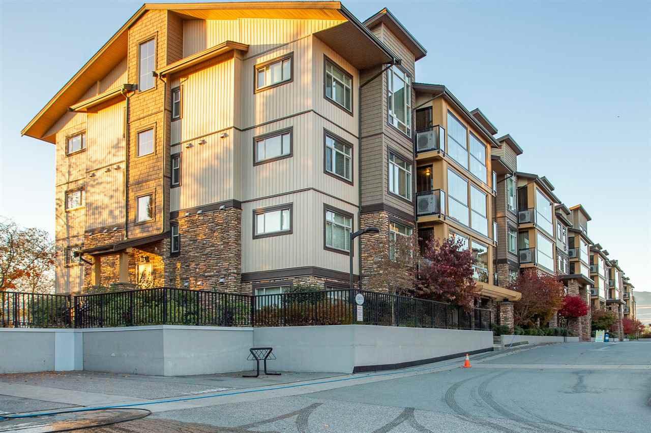 """Main Photo: 104 12635 190A Street in Pitt Meadows: Mid Meadows Condo for sale in """"CEDAR DOWNS"""" : MLS®# R2516724"""