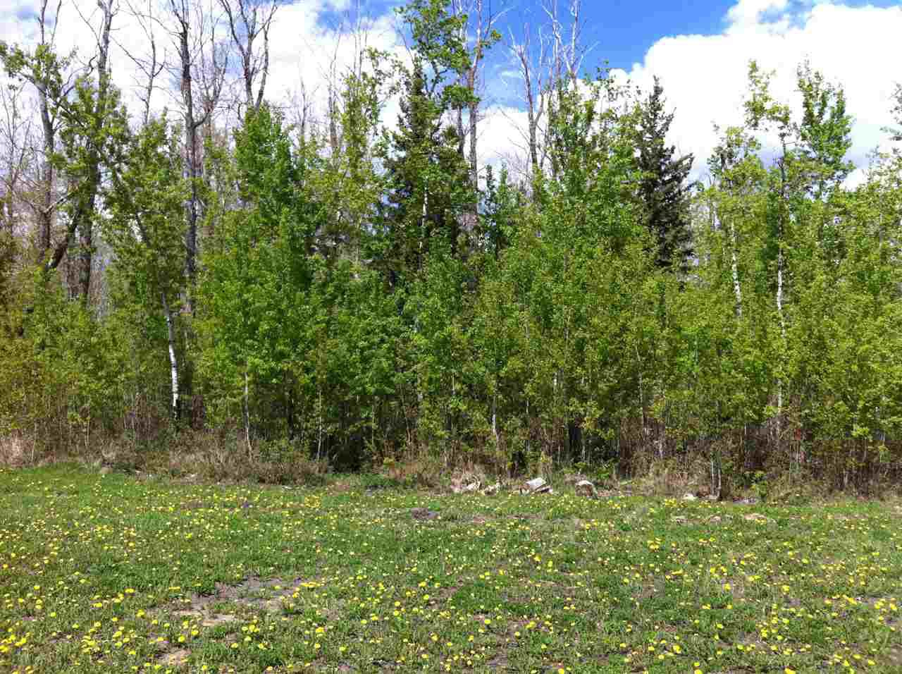 Main Photo: 4718 39 Avenue: Gibbons Vacant Lot for sale : MLS®# E4084555