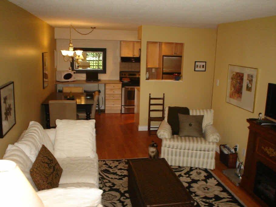 Main Photo: 101 36 E 14TH AVENUE in : Mount Pleasant VE Condo for sale : MLS®# V663023
