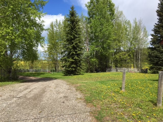 """Photo 16: Photos: 2692 NORWOOD Road in Quesnel: Bouchie Lake House for sale in """"BOUCHIE LAKE"""" (Quesnel (Zone 28))  : MLS®# R2459327"""