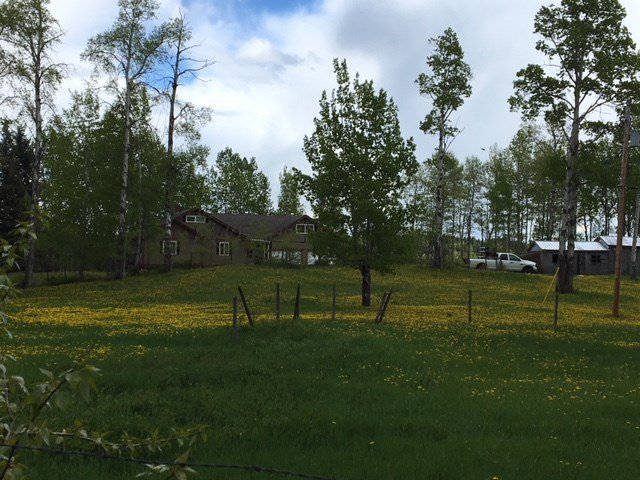 """Photo 17: Photos: 2692 NORWOOD Road in Quesnel: Bouchie Lake House for sale in """"BOUCHIE LAKE"""" (Quesnel (Zone 28))  : MLS®# R2459327"""