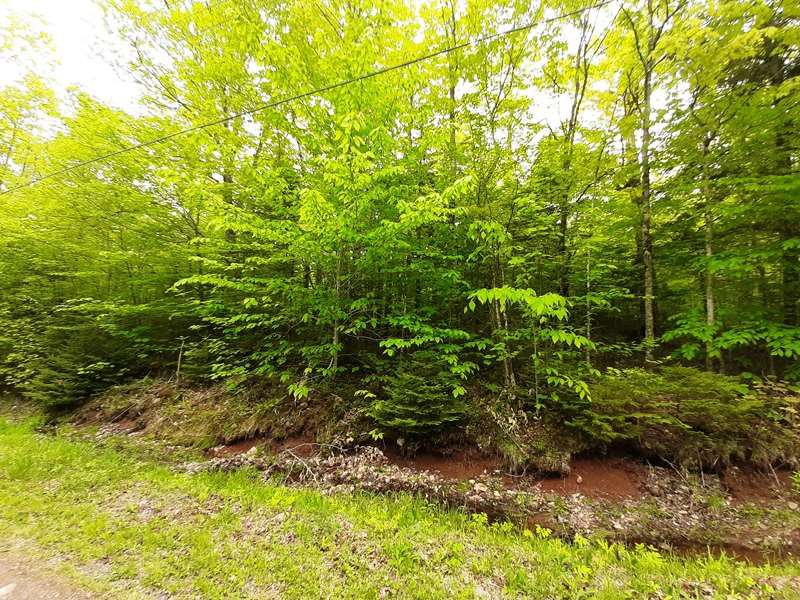 Main Photo: Lot N2 Nature Heaven Road in Lake Paul: 404-Kings County Vacant Land for sale (Annapolis Valley)  : MLS®# 202009524