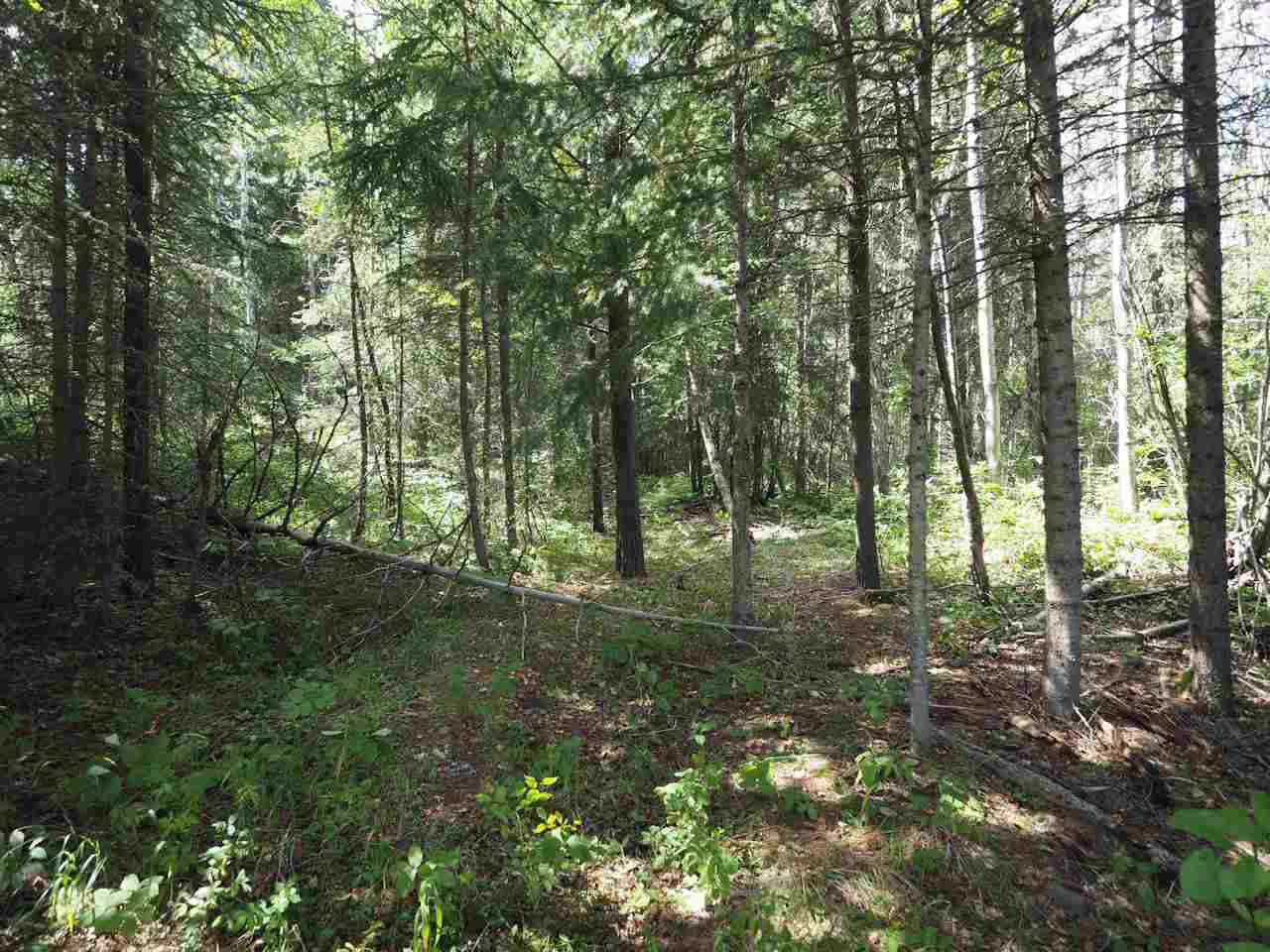 Main Photo: 3450 TIMOTHY HIGHLAND Road: Lac la Hache Land for sale (100 Mile House (Zone 10))  : MLS®# R2484918