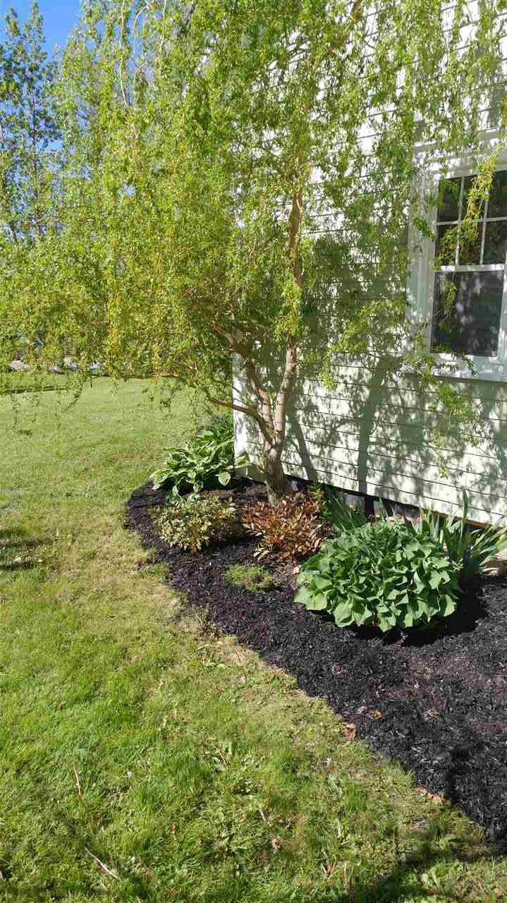 Photo 4: Photos: 2222 North Avenue in Canning: 404-Kings County Residential for sale (Annapolis Valley)  : MLS®# 202001909