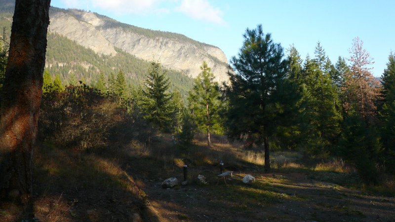 Photo 5: Photos: 422 Richview Road in Tappen / Sunny Brae: Shuswap Land Only for sale (Sunny Brae / Tappen)  : MLS®# 9181758
