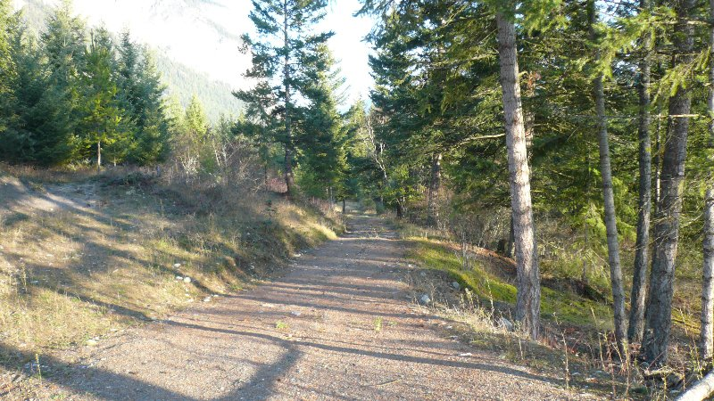 Photo 3: Photos: 422 Richview Road in Tappen / Sunny Brae: Shuswap Land Only for sale (Sunny Brae / Tappen)  : MLS®# 9181758
