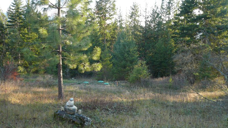 Photo 8: Photos: 422 Richview Road in Tappen / Sunny Brae: Shuswap Land Only for sale (Sunny Brae / Tappen)  : MLS®# 9181758