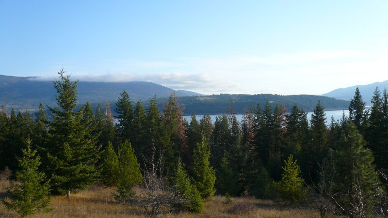 Photo 1: Photos: 422 Richview Road in Tappen / Sunny Brae: Shuswap Land Only for sale (Sunny Brae / Tappen)  : MLS®# 9181758