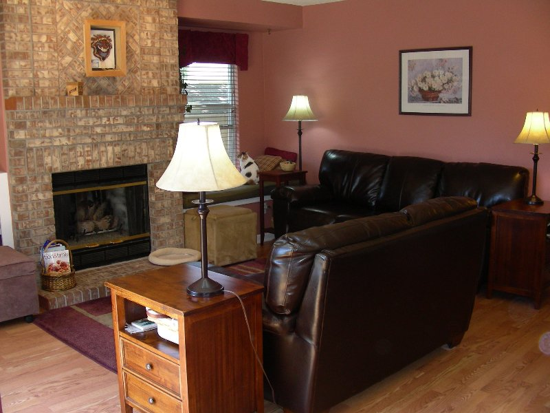 Photo 5: Photos: 18620 E. Grand Circl in Aurora: Pride's Crossing House/Single Family for sale (AUS)  : MLS®# 811142