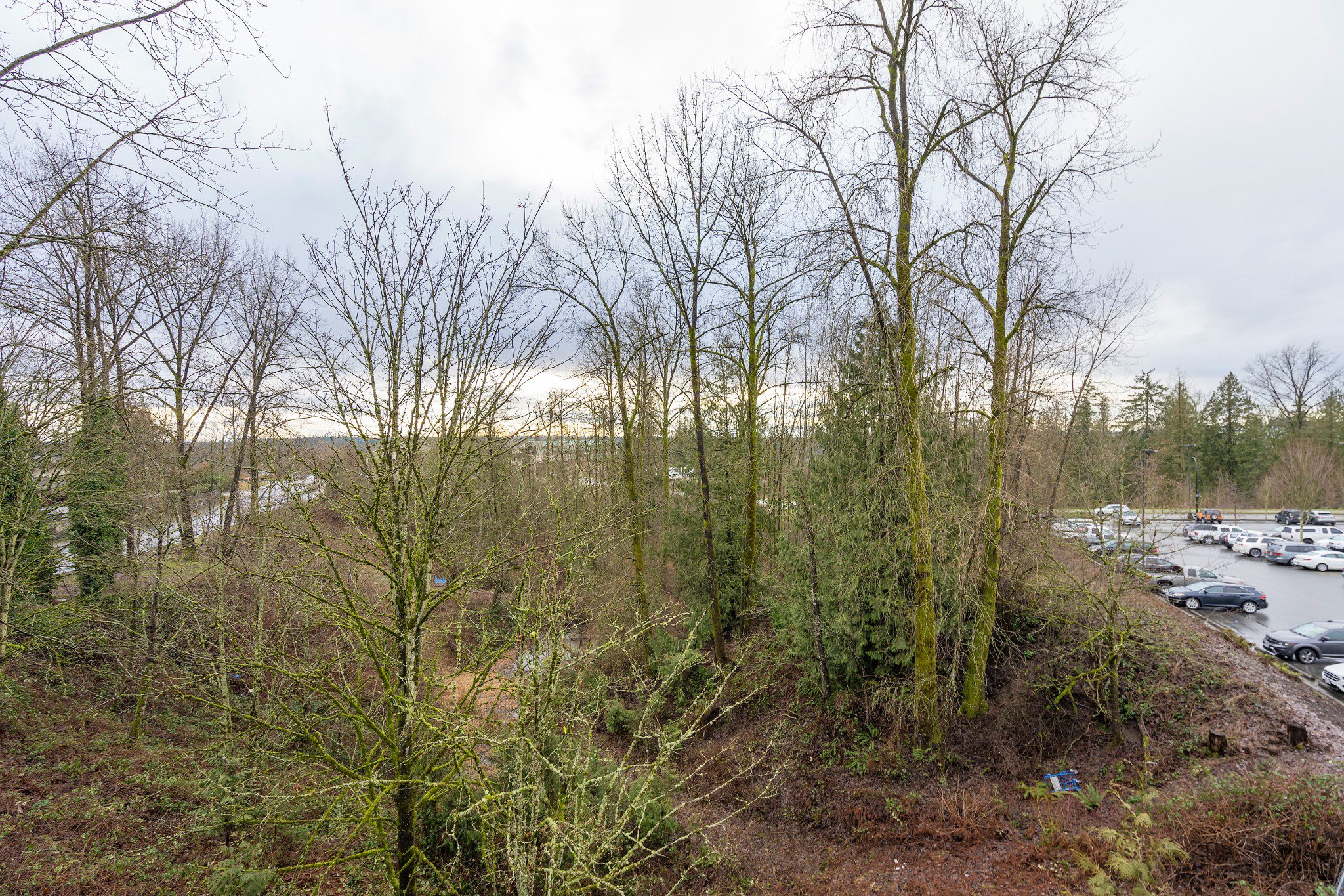 "Photo 18: Photos: 402 22722 LOUGHEED Highway in Maple Ridge: East Central Condo for sale in ""MARKS PLACE"" : MLS®# R2431567"