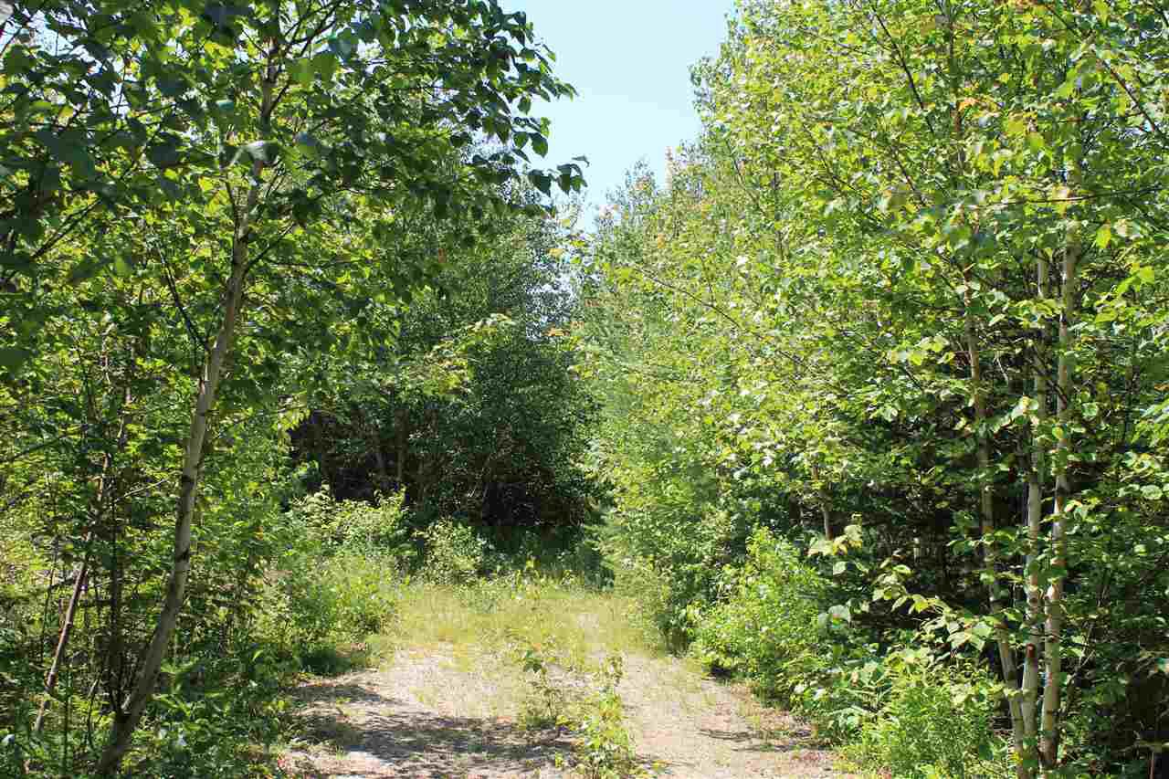 Main Photo: Lot 4 Morganville Road in Morganville: 401-Digby County Vacant Land for sale (Annapolis Valley)  : MLS®# 202012965