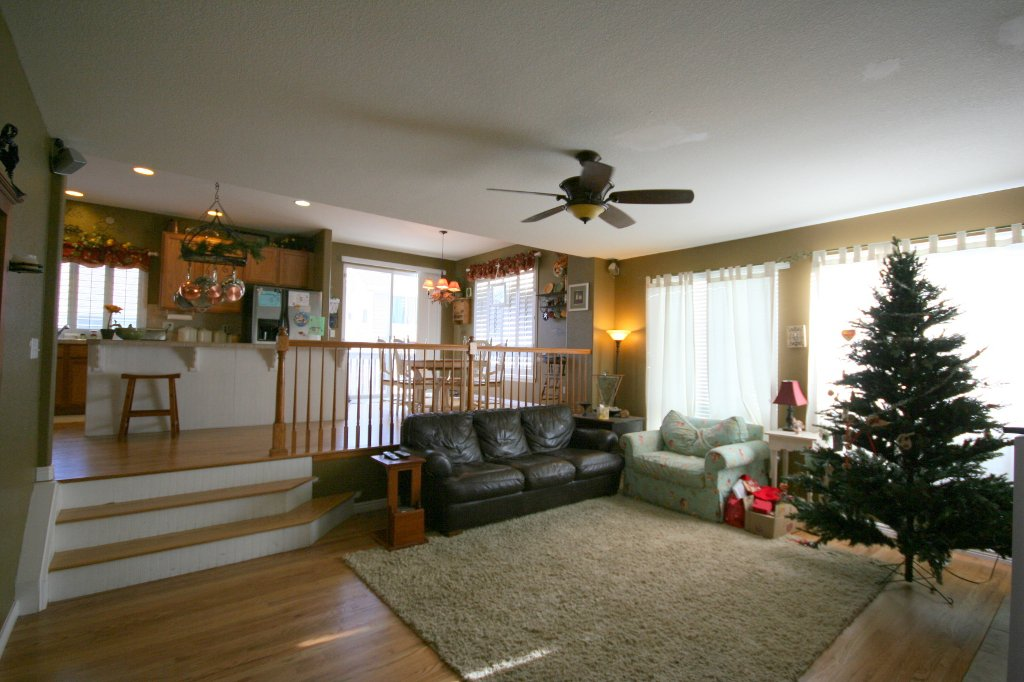 Photo 7: Photos: 4576 South Jebel Way in Centennial: House for sale : MLS®# 951366