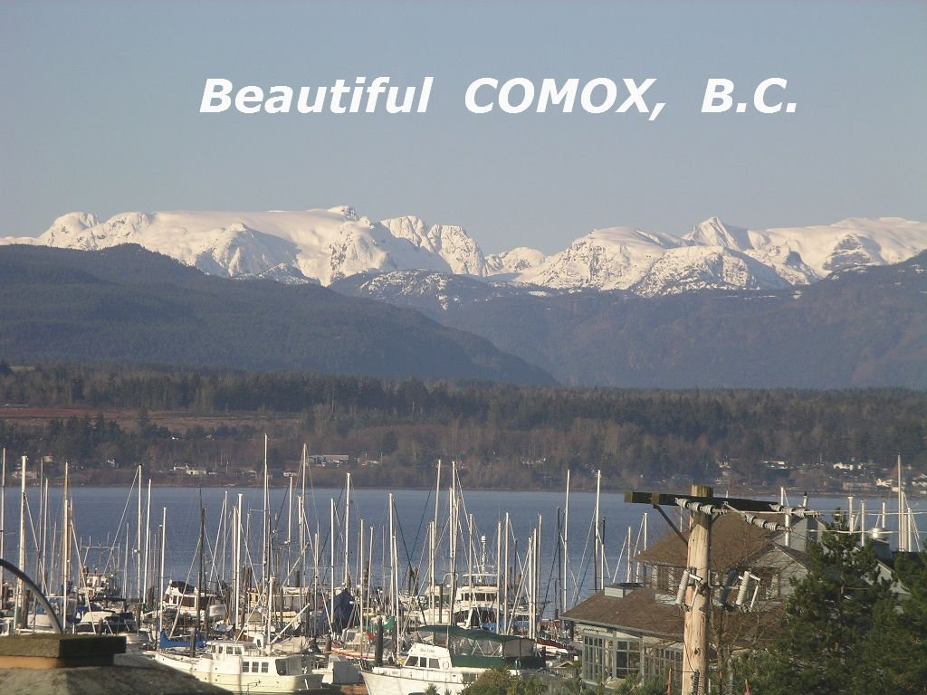 Main Photo: #308  1695 Comox Ave., in Comox: Condo for sale (FVREB Out of Town)  : MLS®# 284902