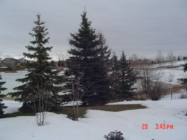 Photo 24: Photos: 22 SANDSTONE PLACE in : Fort Garry/Whyte Ridge/St Norbert Residential for sale (South West Winnipeg)  : MLS®# 2704125