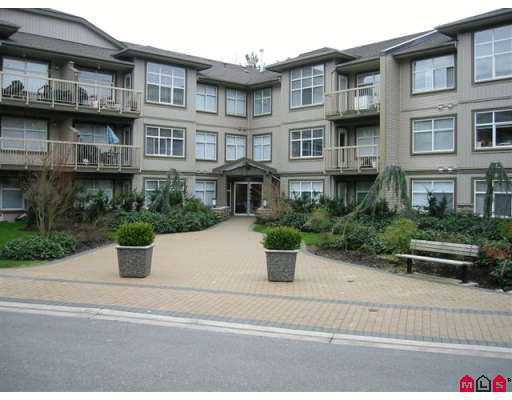 "Main Photo: 14885 105TH Ave in Surrey: Guildford Condo for sale in ""REVIVA"" (North Surrey)  : MLS®# F2704950"