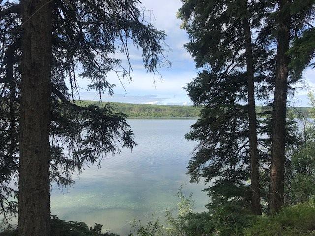 "Main Photo: 14003 275 Road: Charlie Lake Land for sale in ""CHARLIE LAKE"" (Fort St. John (Zone 60))  : MLS®# R2470464"