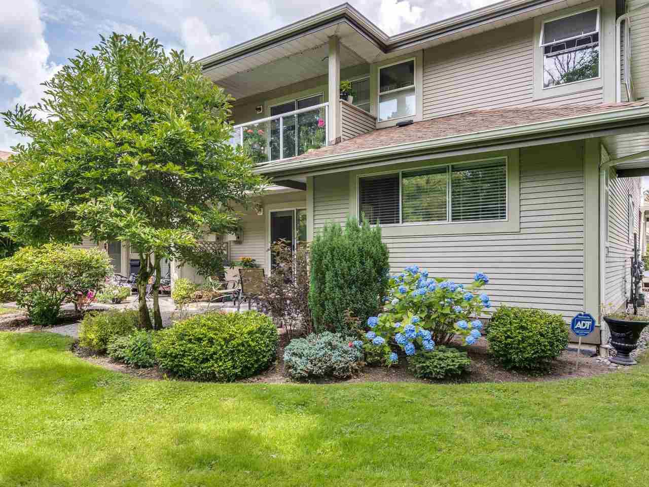 "Main Photo: 21 12071 232B Street in Maple Ridge: East Central Townhouse for sale in ""Creekside Glen"" : MLS®# R2473221"