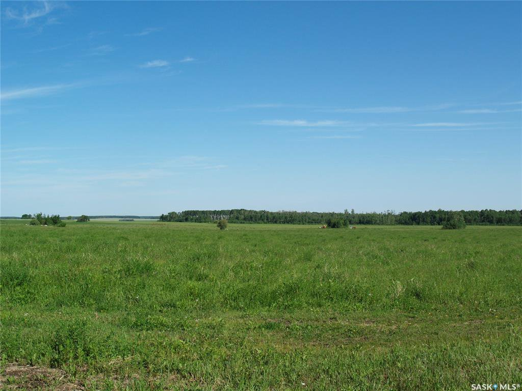 Main Photo: ANGUS FARM in Barrier Valley: Farm for sale (Barrier Valley Rm No. 397)  : MLS®# SK817568