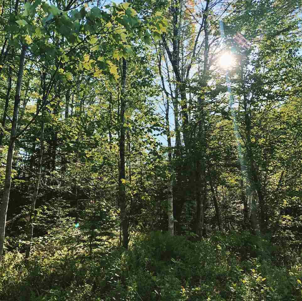 Main Photo: B-79 & B-1 Beamish Road in East Uniacke: 105-East Hants/Colchester West Vacant Land for sale (Halifax-Dartmouth)  : MLS®# 202004604