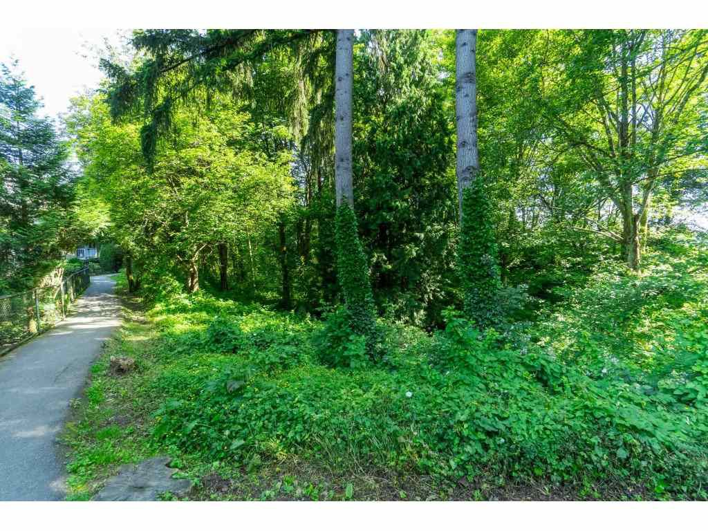 """Photo 30: Photos: 76 8892 208 Street in Langley: Walnut Grove Townhouse for sale in """"Hunter's Run"""" : MLS®# R2466617"""