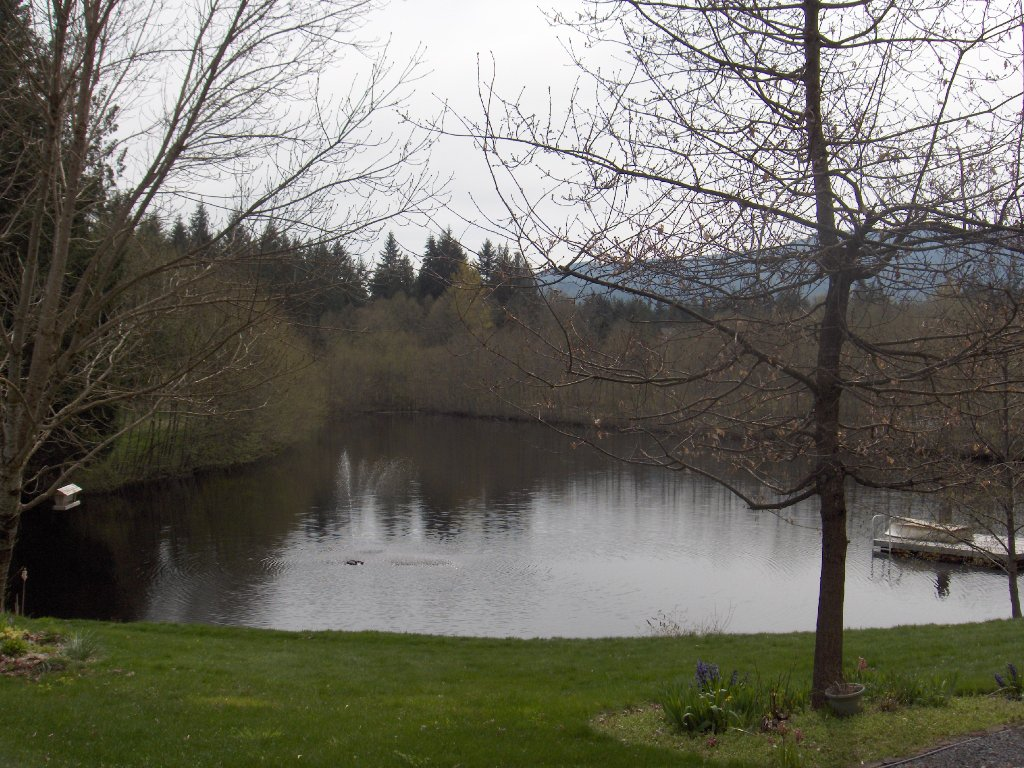 Main Photo: 4716 Cowichan Lake Road in Duncan: House  (FVREB Out of Town)  : MLS®# VIREB 287173